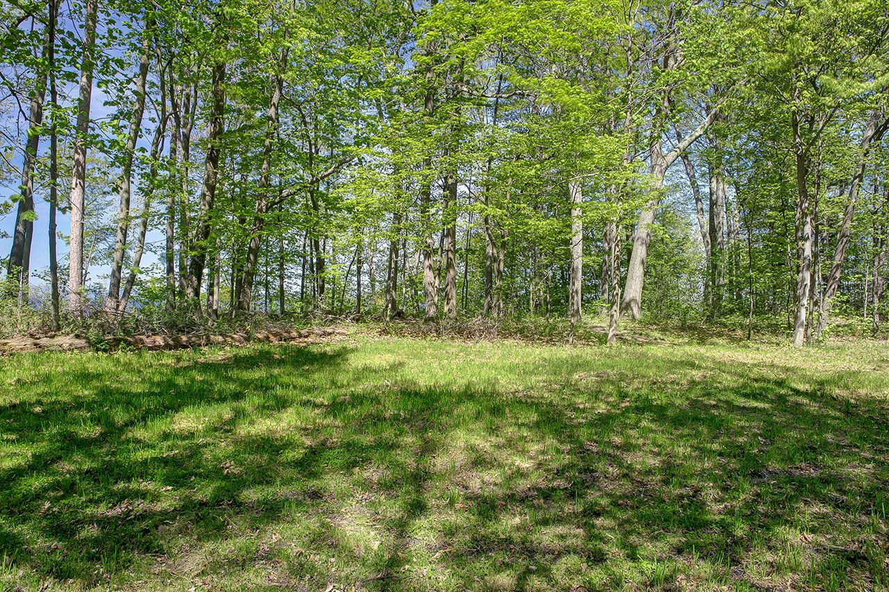 Additional photo for property listing at Orchard Shore Land 0 Orchard Shore Colchester, Vermont,05446 Estados Unidos