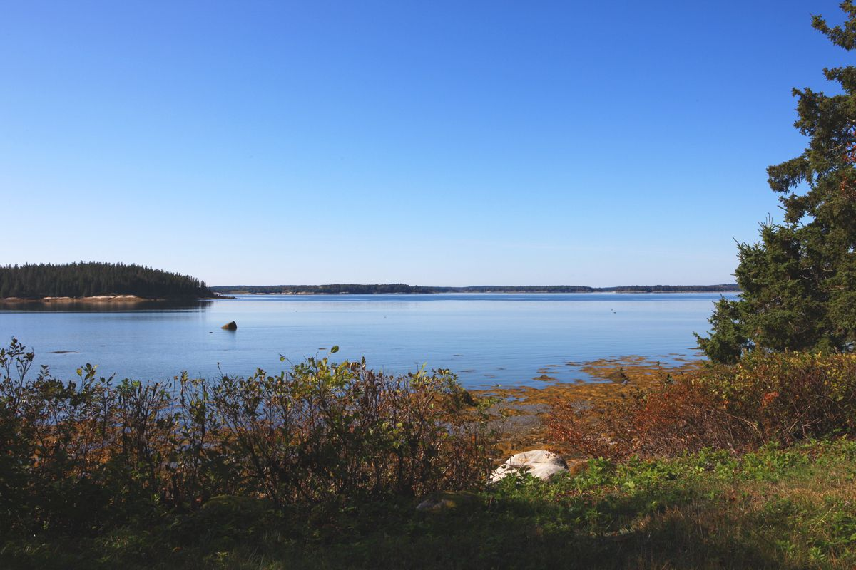 Additional photo for property listing at Windsong 40 Kelley Point Road Brooklin, Maine,04616 États-Unis