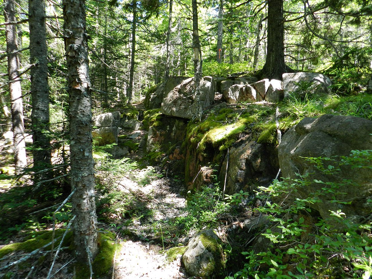 Additional photo for property listing at Birch Brook at Seal Harbor Rock Garden Mount Desert, Maine,04675 Hoa Kỳ