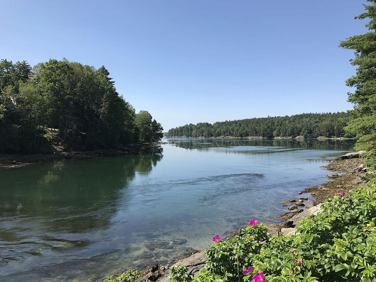 Additional photo for property listing at Ebb & Flow 171 Falls Bridge Road Blue Hill, Maine,04614 États-Unis