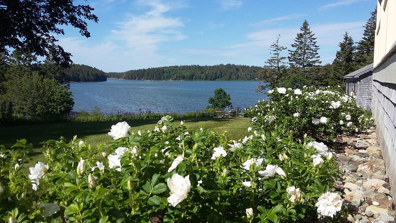 Additional photo for property listing at Cove Meadow 15 Cove Meadow Road Stonington, Maine,04681 United States