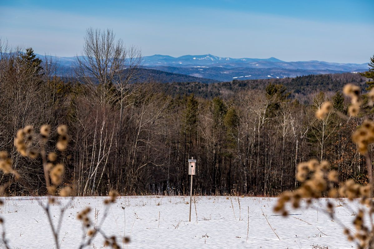 Additional photo for property listing at 80 Three Mile Rd 80 Three Mile Rd Hanover, New Hampshire,03755 Hoa Kỳ