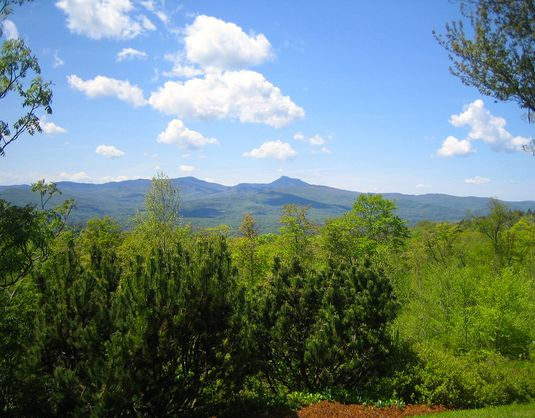 2295-Moretown-Mountain-Road-Moretown-VT-05660