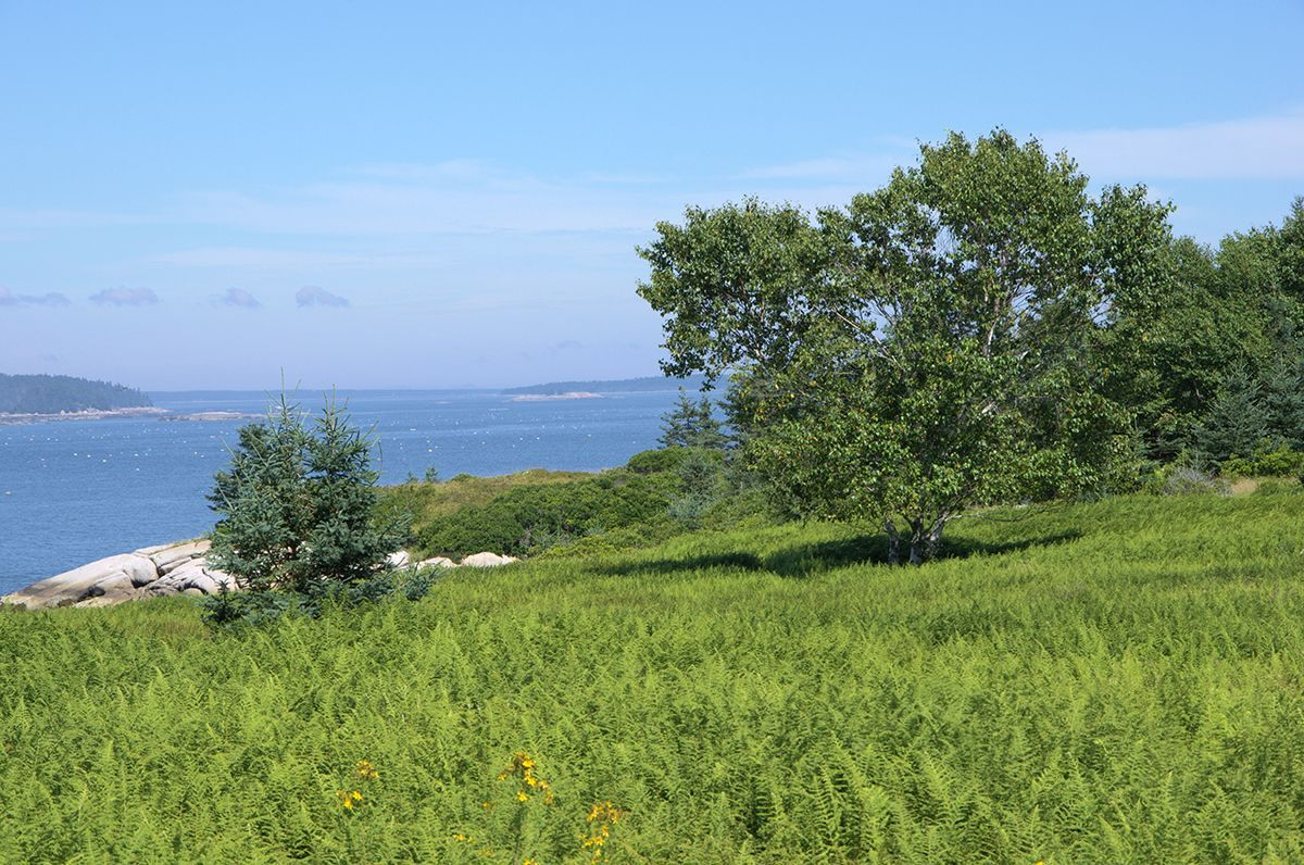 Additional photo for property listing at White Island 00 White Island Deer Isle, 마이애미,04627 미국