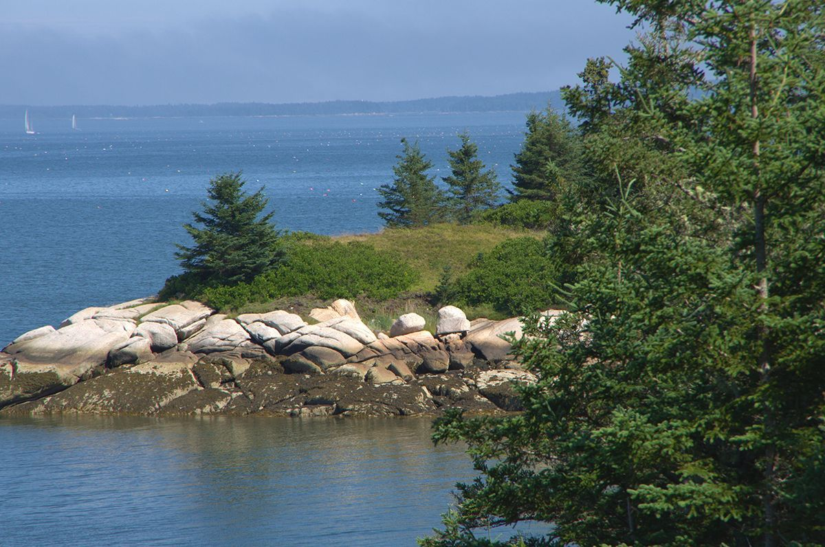 Additional photo for property listing at White Island 00 White Island Deer Isle, Maine,04627 United States