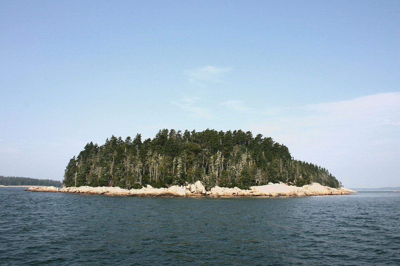 Additional photo for property listing at High Island 0 High Island Spruce Head, Мэн,04859 Соединенные Штаты