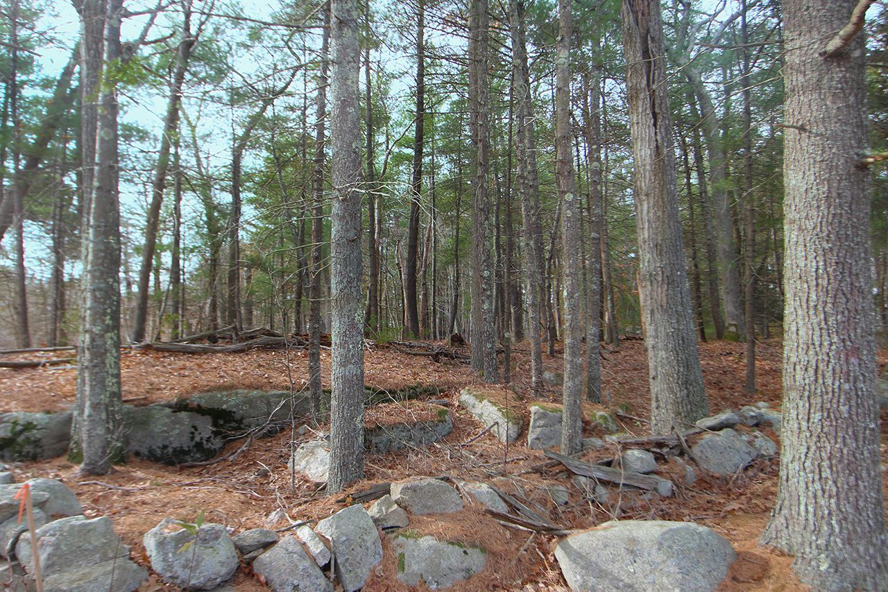 Additional photo for property listing at Plum Hill Building Lots 8-12 Plum Hill Manchester, Massachusetts,01944 États-Unis