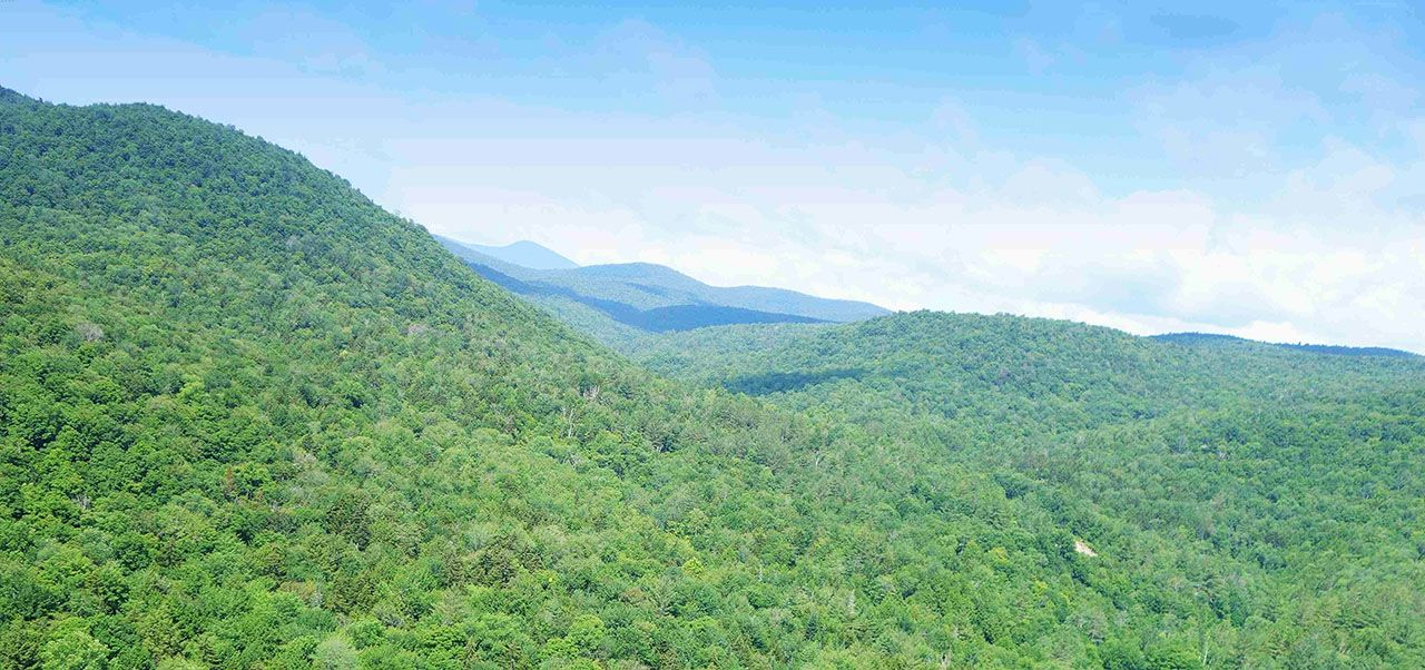 Additional photo for property listing at Bridgewater HIll 0 Gorge Hill Rd Bridgewater, Vermont,05034 Estados Unidos