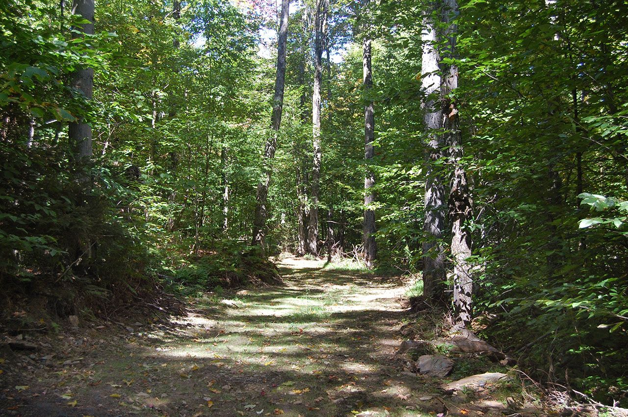 Additional photo for property listing at Bridgewater HIll 0 Gorge Hill Rd Bridgewater, Vermont,05034 États-Unis