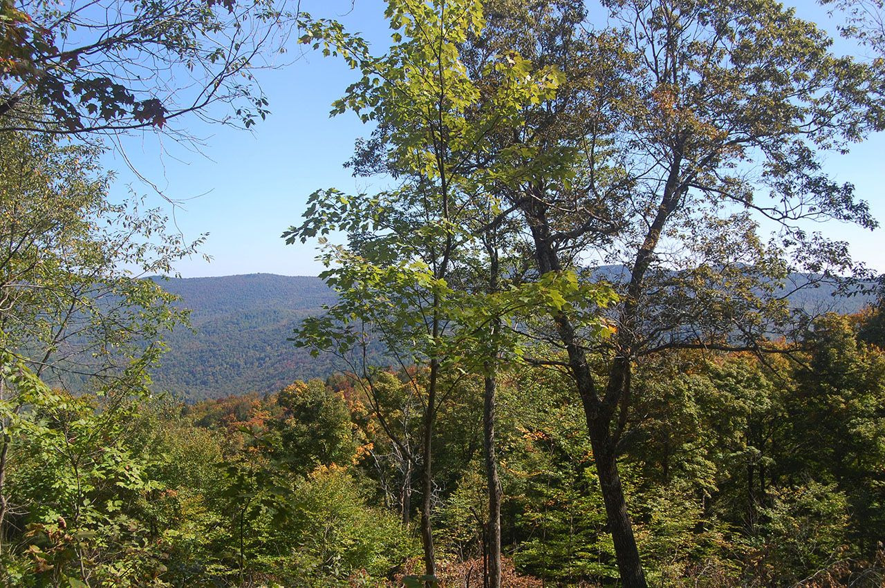 Additional photo for property listing at Bridgewater HIll 0 Gorge Hill Rd Bridgewater, Vermont,05034 Verenigde Staten