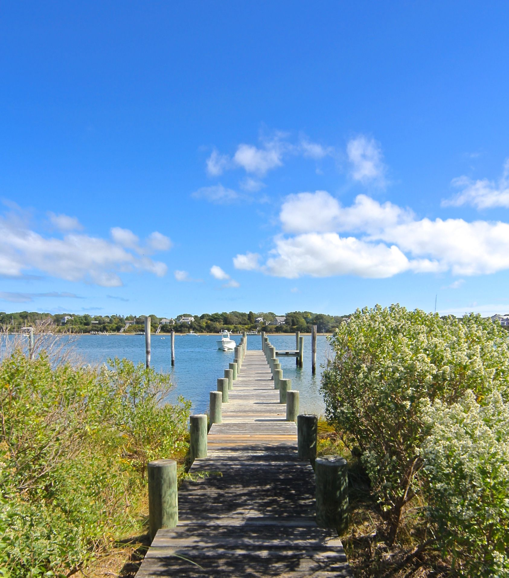 Additional photo for property listing at 32 Ocean View Avenue 32 Ocean View Avenue Edgartown, Massachusetts,02539 Hoa Kỳ